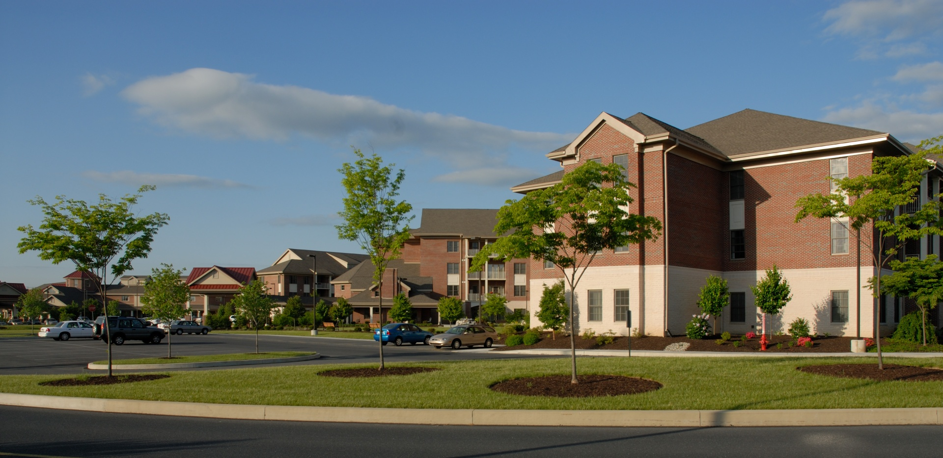 phoenicia senior singles Official phoenicia apartments for rent see photos, current prices, floor plans, and details for 234 apartments in phoenicia, ny.